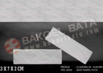 Product-Cladding SK